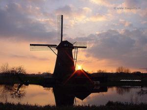 Holland. Image by  HereIsTom